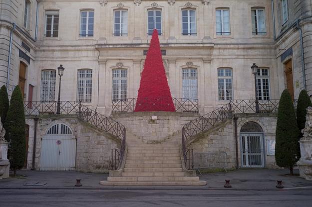 Jan-8 Red tree L1024973