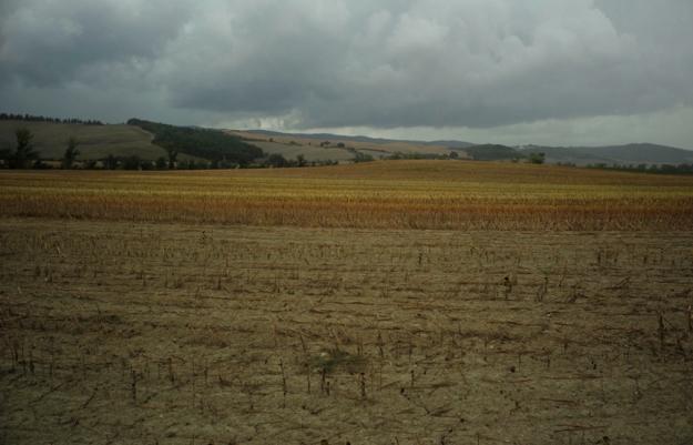 09-14 Fields L1000821