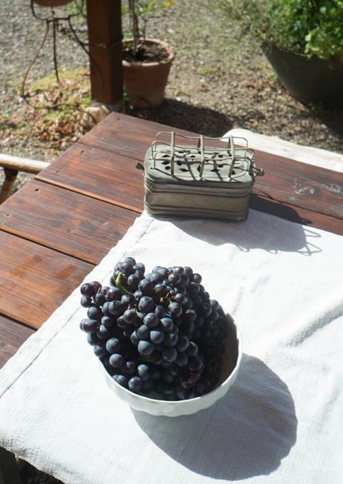 09-18 Grapes L1000871