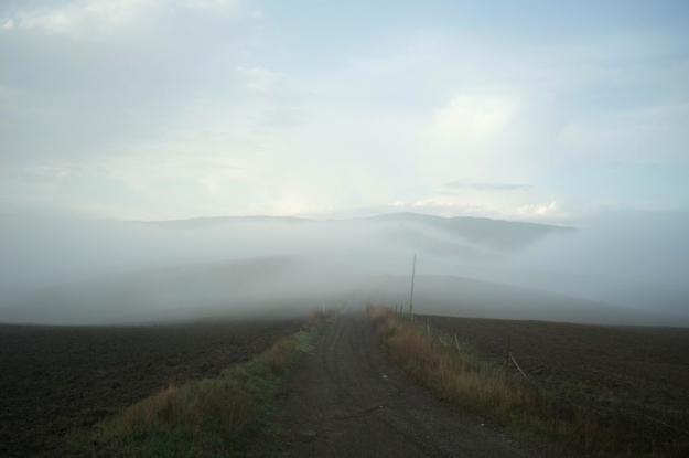 10-7 Fog L1001576